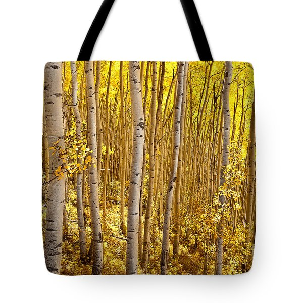 Fall's Golden Light Tote Bag by Steven Reed