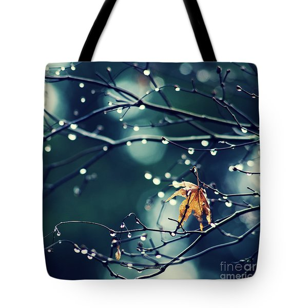 Tote Bag featuring the photograph Fall's Last Leaf - Hipster Photo Square by Charmian Vistaunet