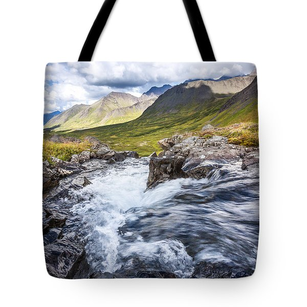 Falls With A View Tote Bag
