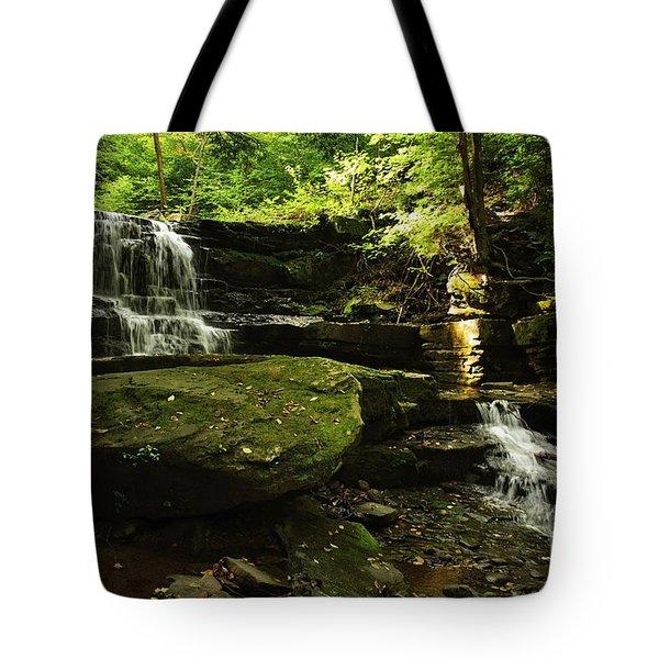 Tote Bag featuring the photograph Fallsbrook Falls by Debra Fedchin