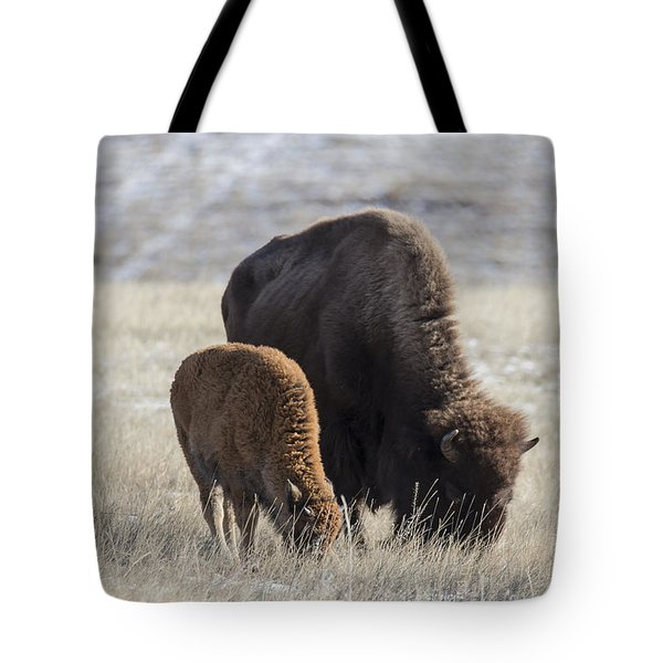 Bison Calf Having A Meal With Its Mother Tote Bag