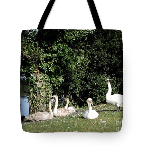 Tote Bag featuring the photograph Family by Katy Mei