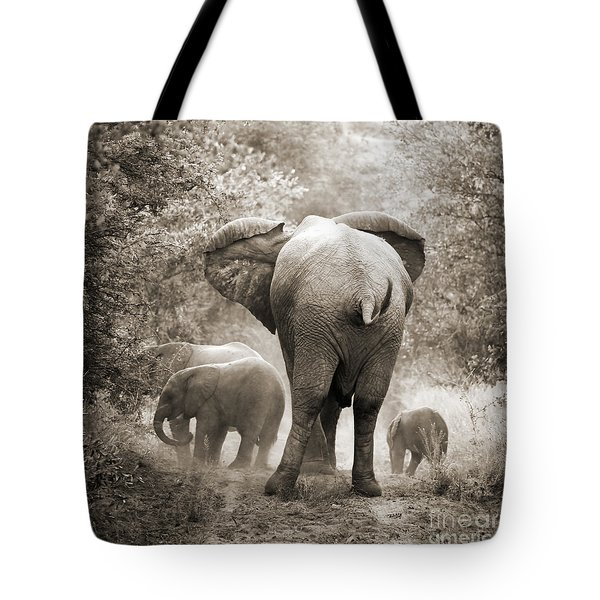 Family Of Elephants Tote Bag