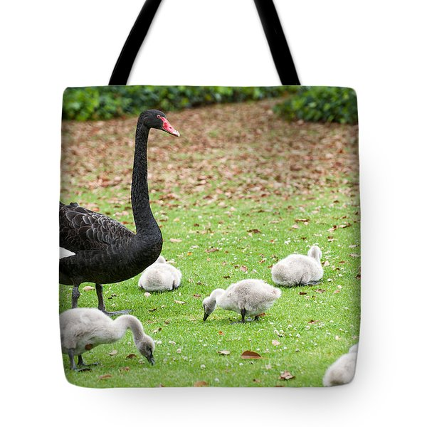 Tote Bag featuring the photograph Family Of Six by Yew Kwang