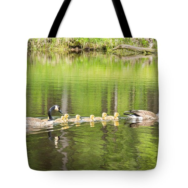 Family Outing Tote Bag by Bill Pevlor