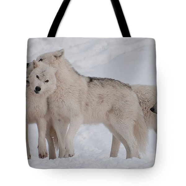 Tote Bag featuring the photograph Family Ties by Bianca Nadeau