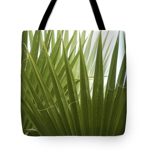 Fan Fair Tote Bag