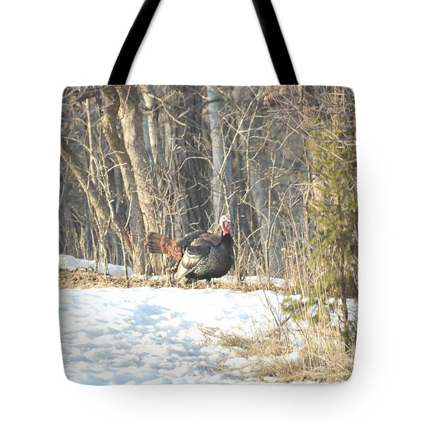 Tote Bag featuring the photograph Fanning by Dacia Doroff