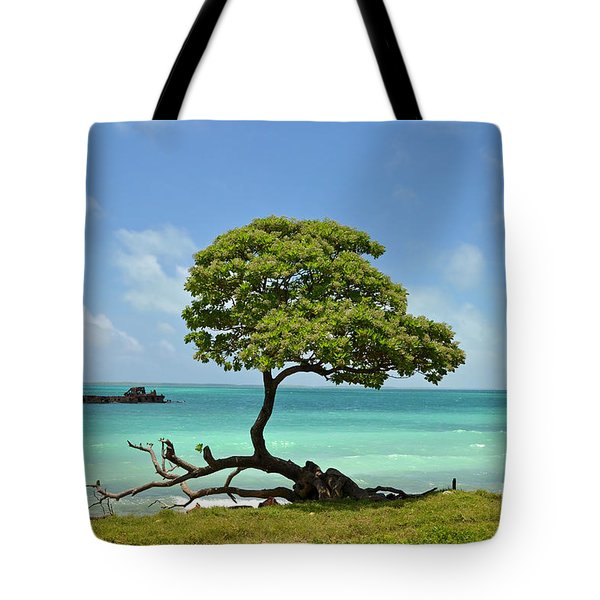 Fanning Tree On Beach Tote Bag by Eva Kaufman