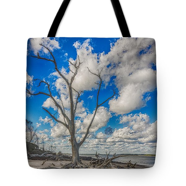 Tote Bag featuring the photograph Fantasma by Paula Porterfield-Izzo