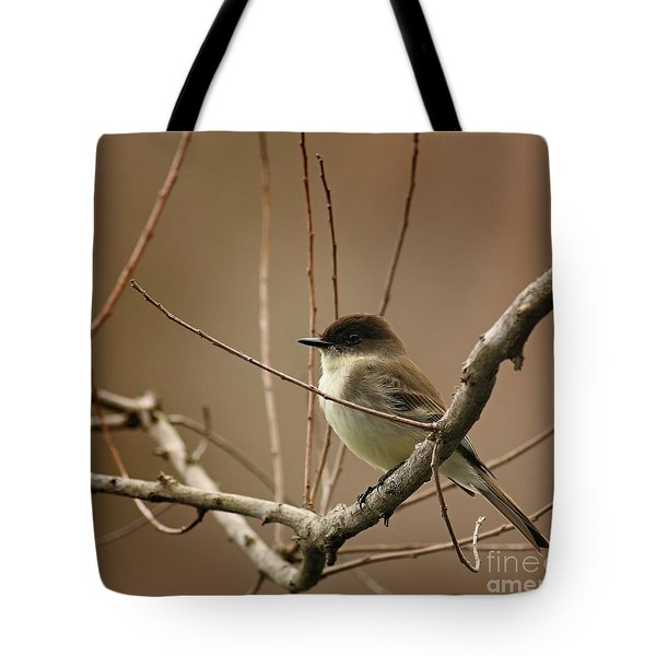 Fantastic Phoebe Tote Bag