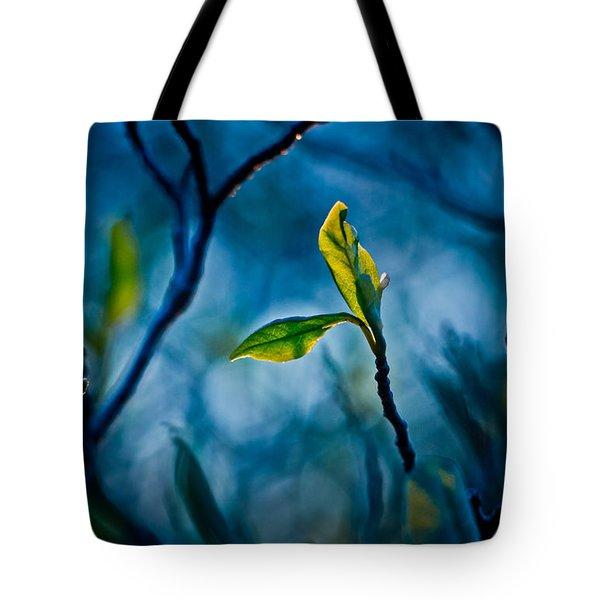 Fantasy In Blue Tote Bag by Linda Unger