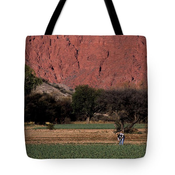 Farmer In Field In Northern Argentina Tote Bag