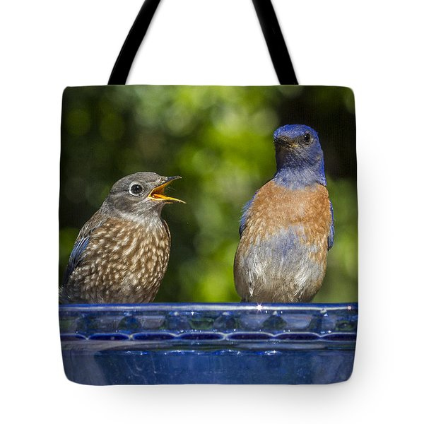 Father And Baby Tote Bag by Jean Noren
