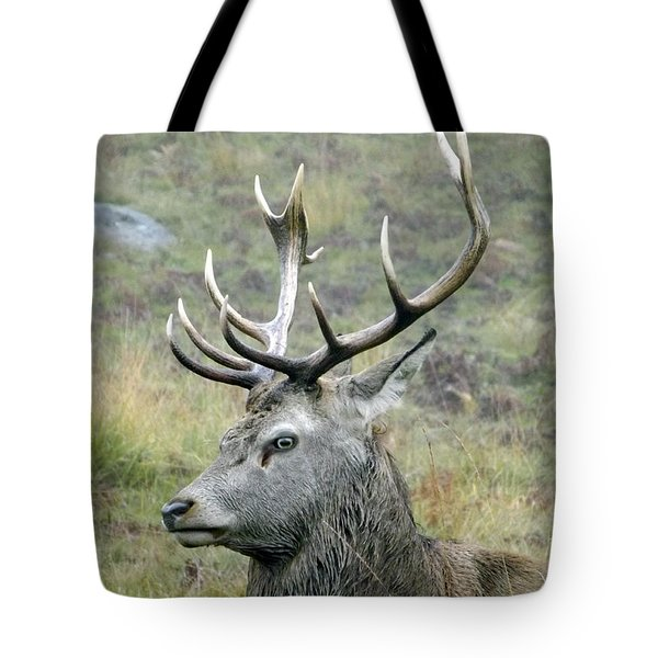 Stag Party The Series Father To Be. Tote Bag by Linsey Williams