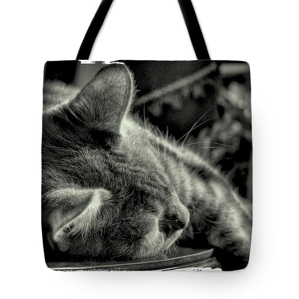 Fatigued Feline Tote Bag by David Patterson