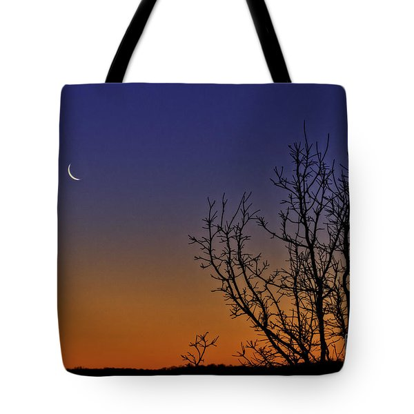 Favorite Moon Tote Bag