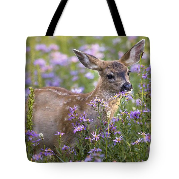 Fawn In Asters Tote Bag
