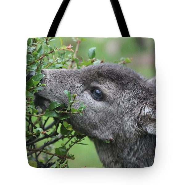 Fawn In The Rain Tote Bag