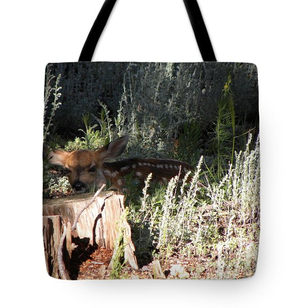 Fawn Front Yard Divide Co Tote Bag