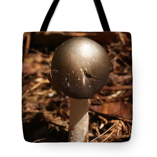 Fawn Mushroom Pluteus Cervinus Tote Bag by Susan Leavines