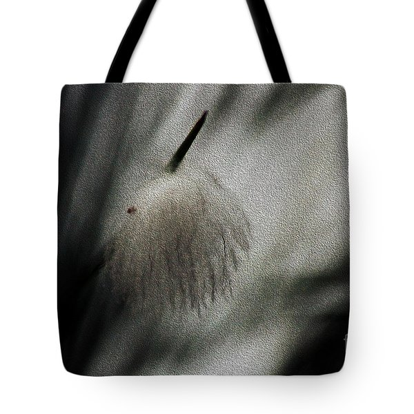 Tote Bag featuring the photograph Feather by Cassandra Buckley