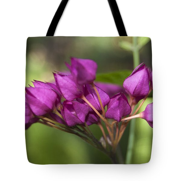 Tote Bag featuring the photograph February Color by Penny Lisowski