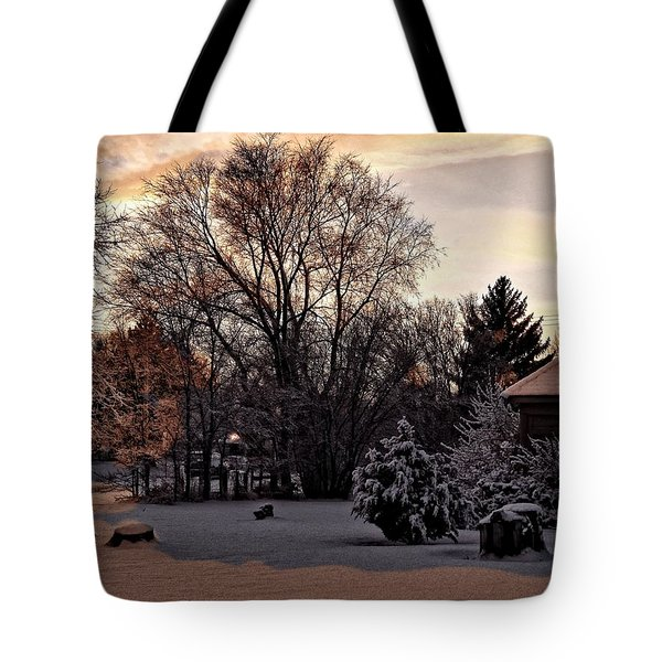 Tote Bag featuring the digital art February Evening Light by Aliceann Carlton