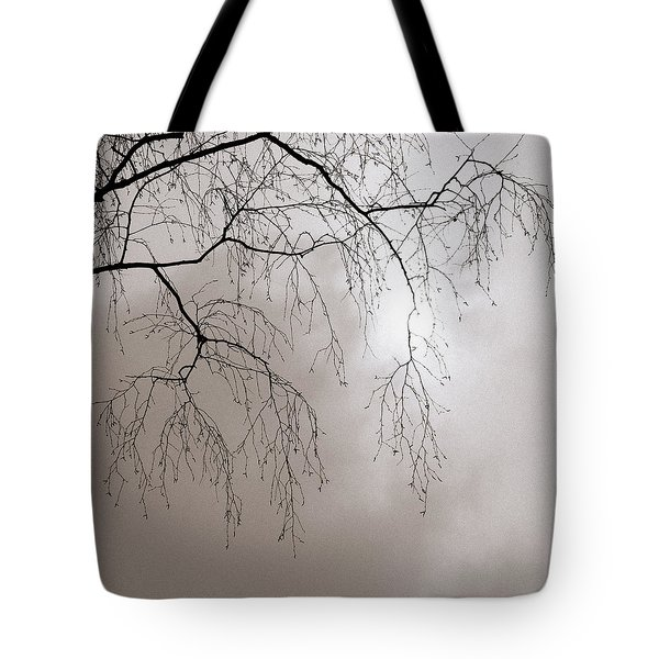 February Sun - Featured 3 Tote Bag by Alexander Senin