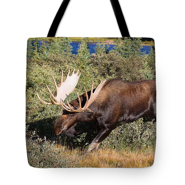 Tote Bag featuring the photograph A Noid by Jim Garrison