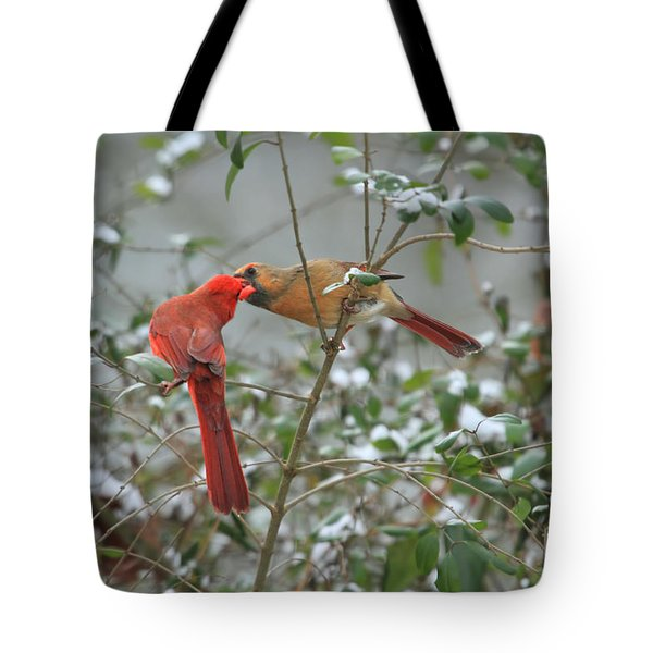 Feeding Cardinals Tote Bag by Geraldine DeBoer