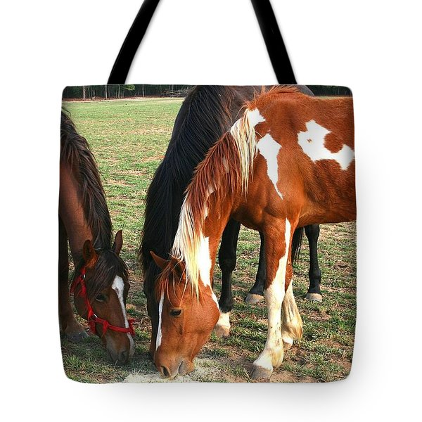 Feeding Horses Tote Bag by Cathy Harper