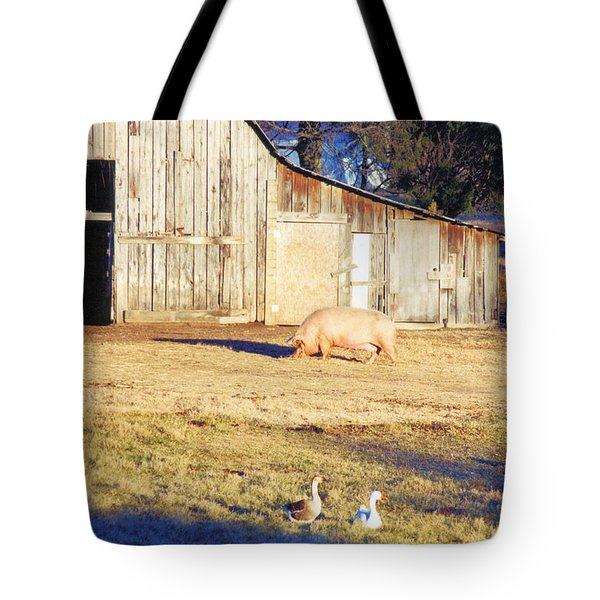 Feel The Sun Tote Bag by Jan Amiss Photography