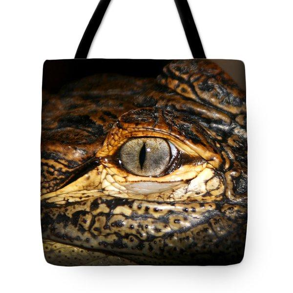 Feisty Gator Tote Bag