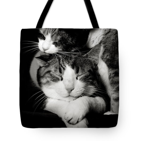 Tote Bag featuring the photograph Feline Love  by Laura Melis