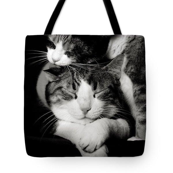 Feline Love  Tote Bag by Laura Melis