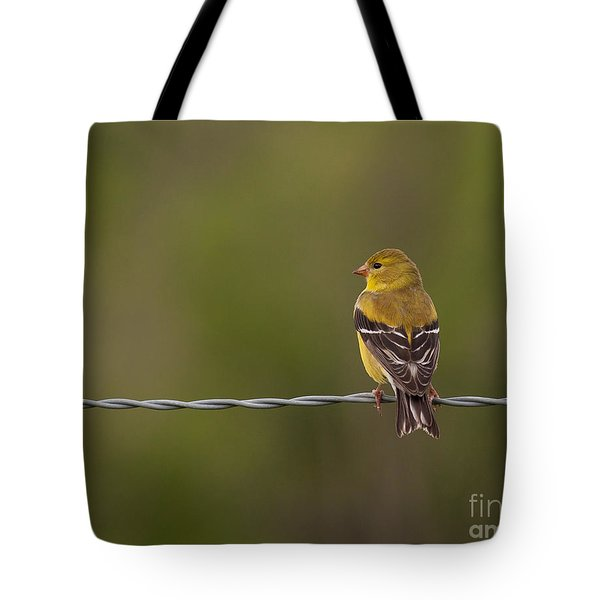 Female American Goldfinch Tote Bag by Douglas Stucky