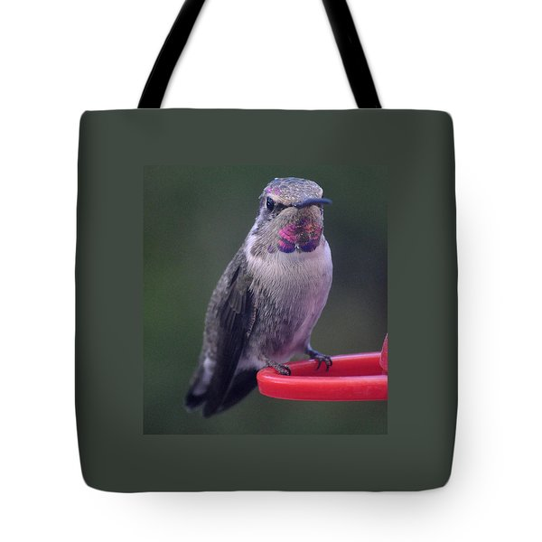 Tote Bag featuring the photograph Female Anna Posing For Cameraman by Jay Milo