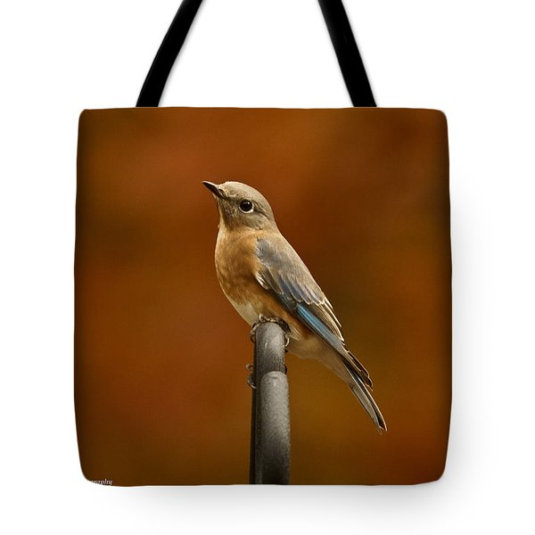 Female Bluebird Tote Bag