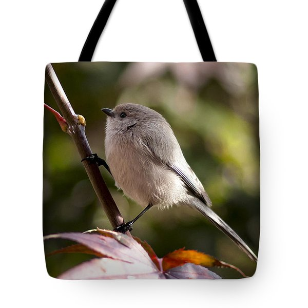 Female Bushtit Tote Bag by Betty Depee