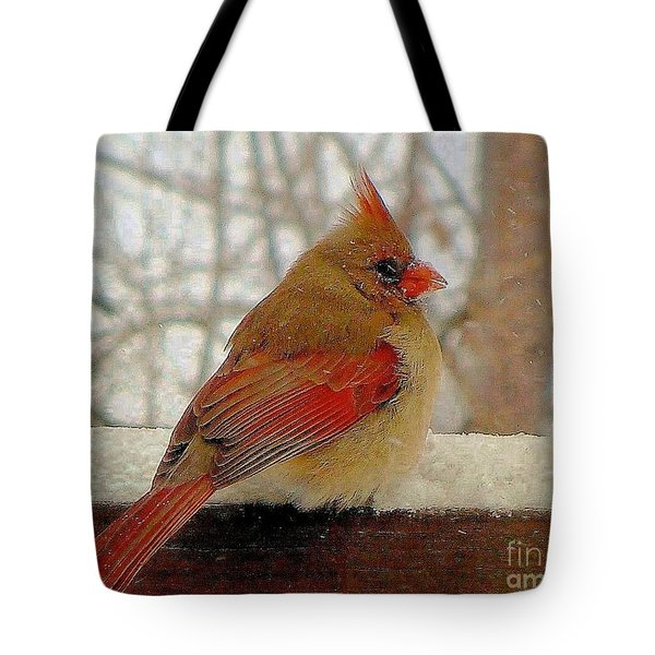 Female Cardinal Caught In Snowstorm Tote Bag