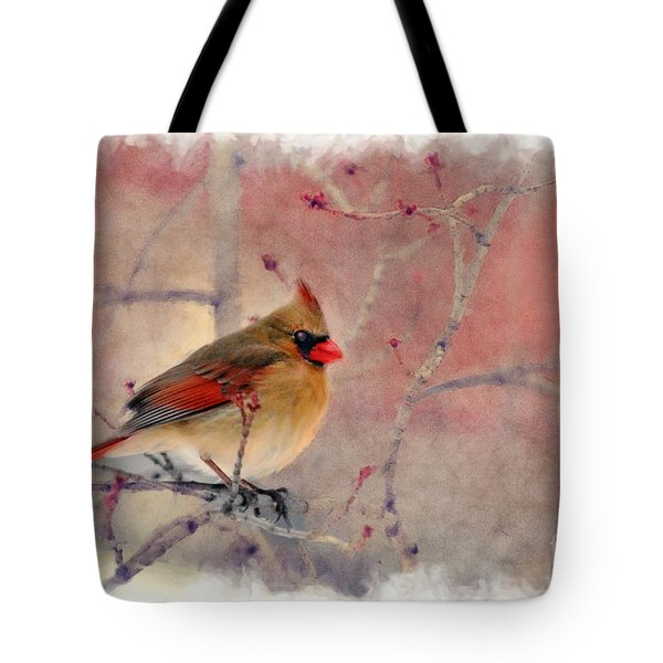 Female Cardinal Portrait Tote Bag by Dan Friend