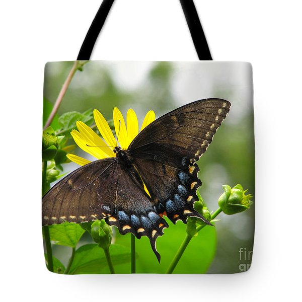 Tote Bag featuring the photograph Female Dark Form Swallowtail Butterfly  by Eva Kaufman
