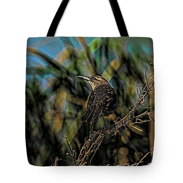 Female Grackle On The Dark Side Tote Bag by Deborah Benoit