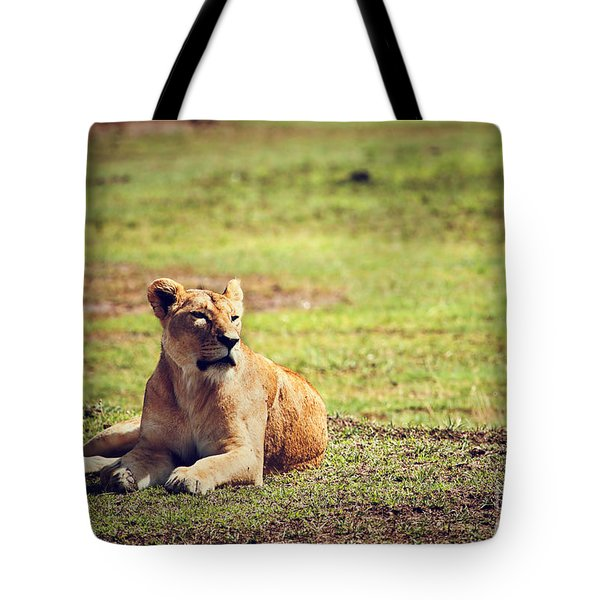 Female Lion Lying. Ngorongoro In Tanzania Tote Bag by Michal Bednarek