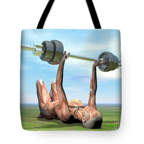Female Musculature Exercising Tote Bag by Elena Duvernay