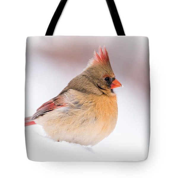 Female Northern Cardinal Tote Bag