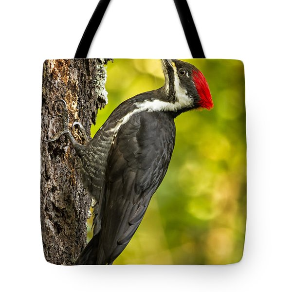 Female Pileated Woodpecker No. 2 Tote Bag