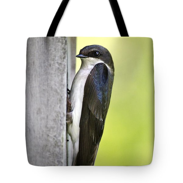 Tree Swallow On Nestbox Tote Bag