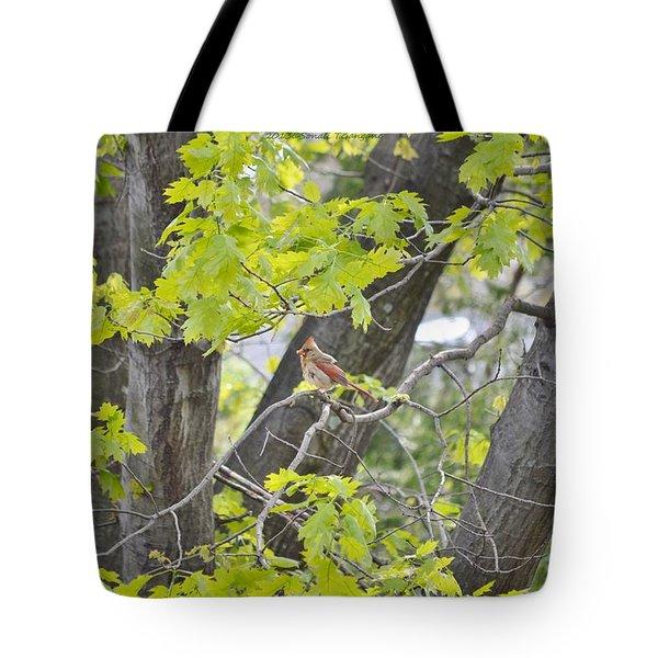 Feminine Cardinal Tote Bag by Sonali Gangane